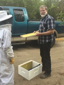 Mark, Oregon - teaching bees 101